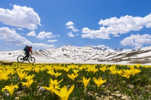 biker-going-past-mountain-landscape-with-flowers