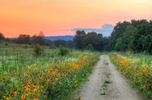 wisconsin-great-river-trail-dusk-landscape-with-hills